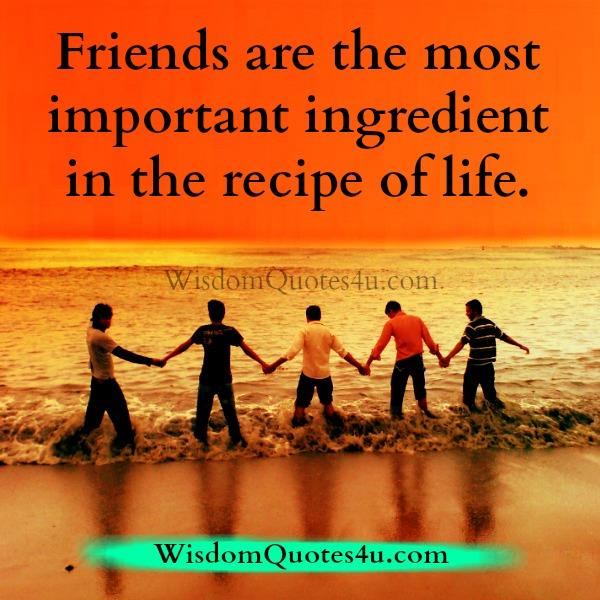 Friends are the most important