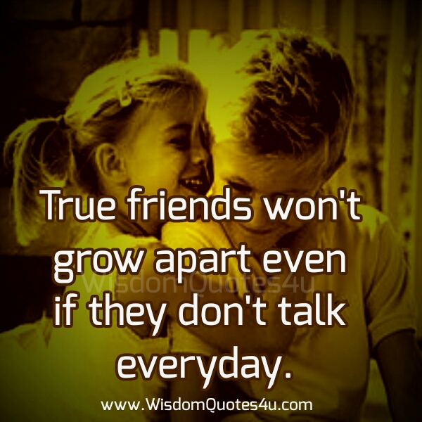 What is a true friend?